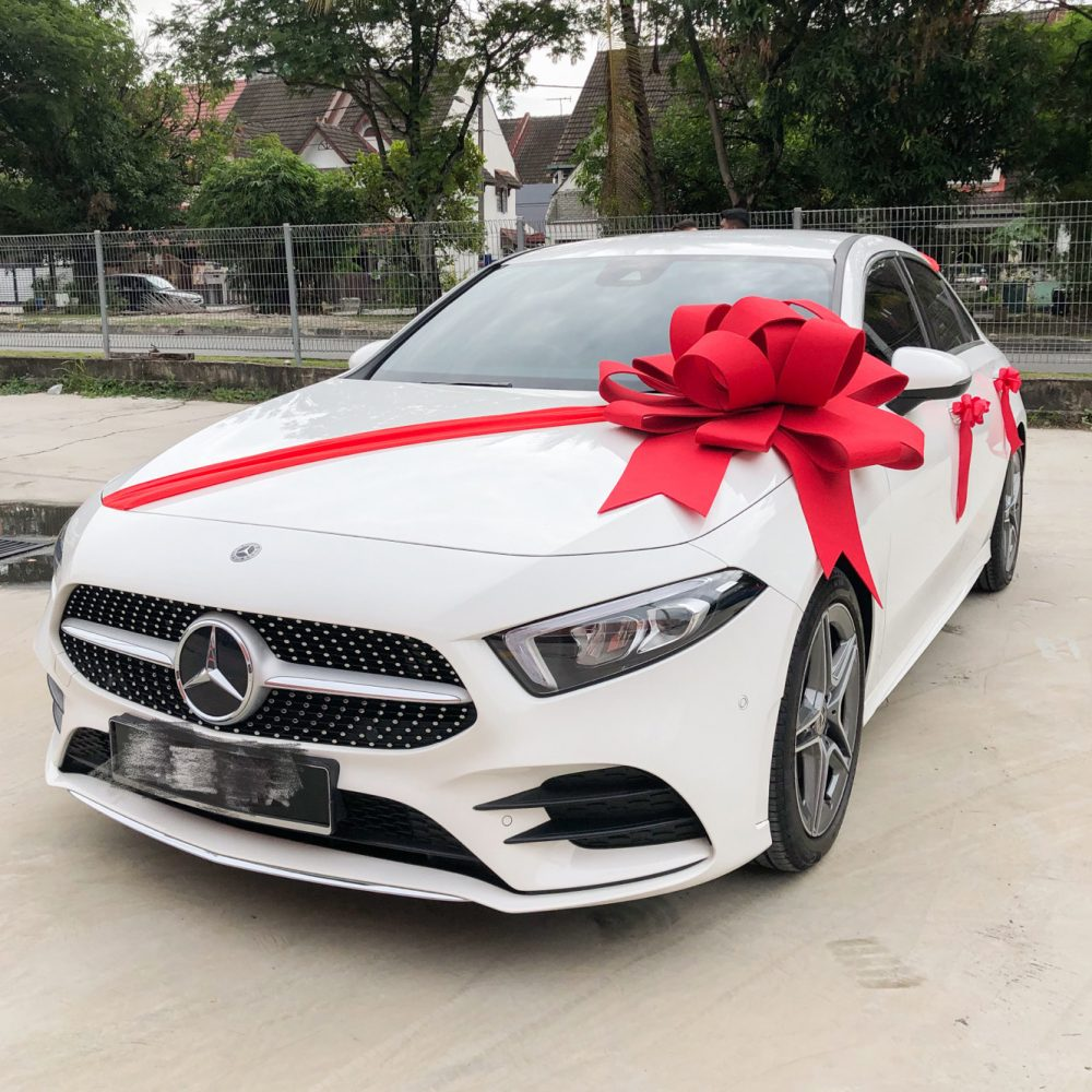 Car Deco with Giant Bow